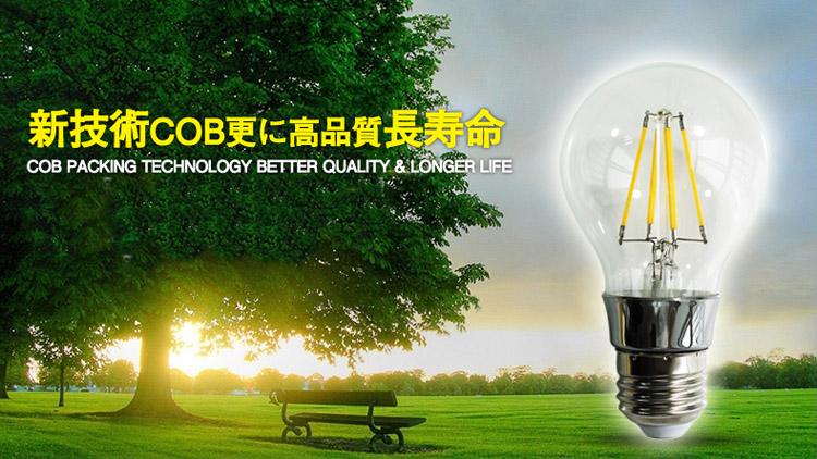 当電球は電圧110Vに超える場合に使用できません